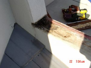 This is water damage along a roof line.